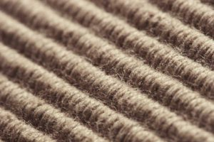 Can Rental Machines Really Get My Carpets Clean?