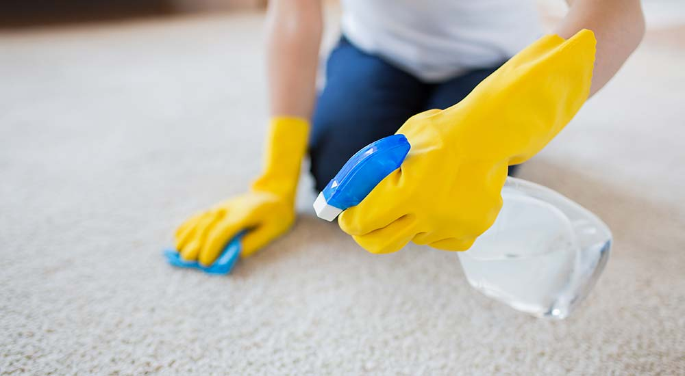 Pet odor removal from carpet
